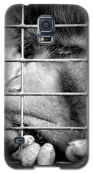Galaxy S5 Case featuring the photograph How Do I Get Out Of Here by Barbara Dudley