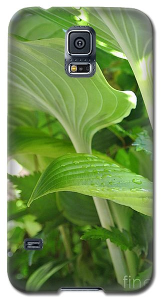 Hosta Galaxy S5 Case