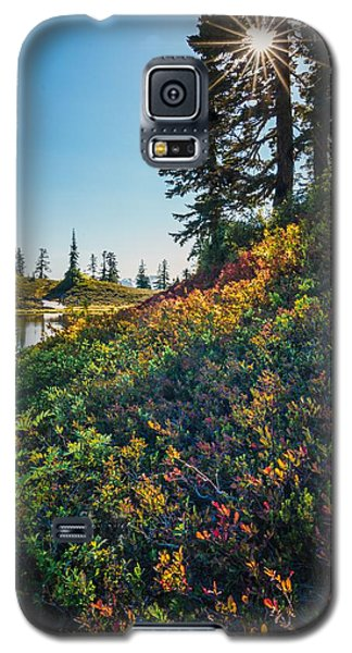 Huckleberry Afternoon Galaxy S5 Case