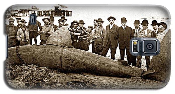 Huge Basking Shark Near Fishermans Wharf Monterey California Circa 1912 Galaxy S5 Case