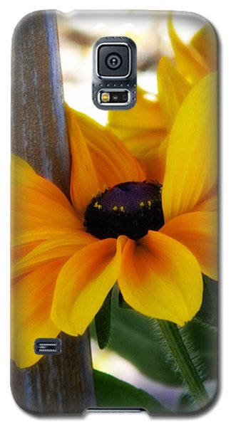 Hugging The Pole Galaxy S5 Case by Michelle Frizzell-Thompson