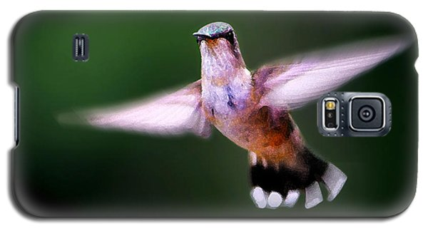 Hummer Ballet 3 Galaxy S5 Case by ABeautifulSky Photography