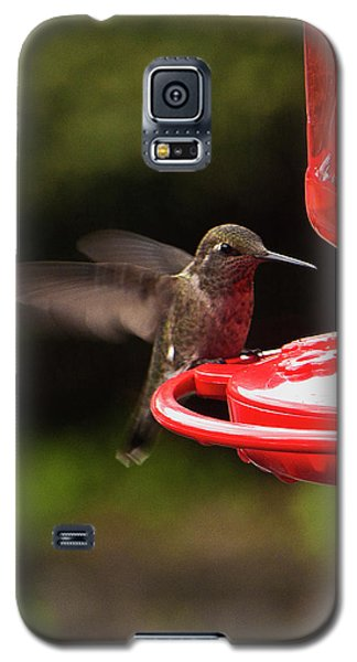 Humming Bird Landing Galaxy S5 Case