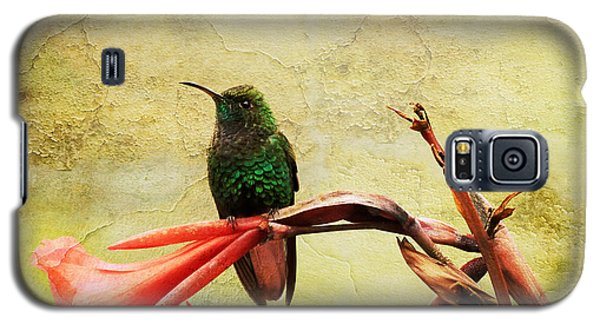 Galaxy S5 Case featuring the photograph Hummingbird 1 by Teresa Zieba