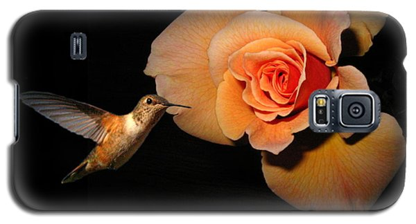 Hummingbird And Orange Rose Galaxy S5 Case