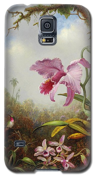 Orchid Galaxy S5 Case - Hummingbird And Two Types Of Orchids by Martin Johnson Heade