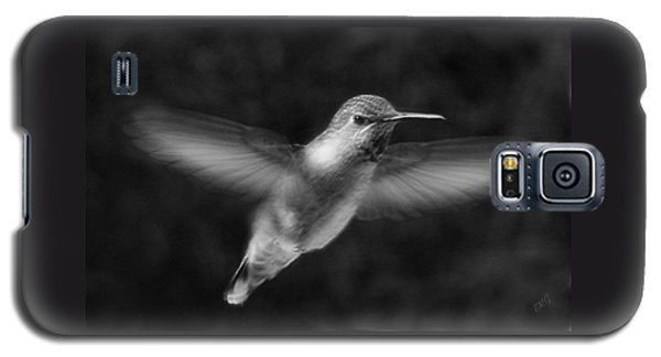 Hummingbird Galaxy S5 Case by Ben and Raisa Gertsberg