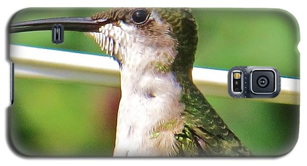 Galaxy S5 Case featuring the photograph Hummingbird Details 5 by Judy Via-Wolff