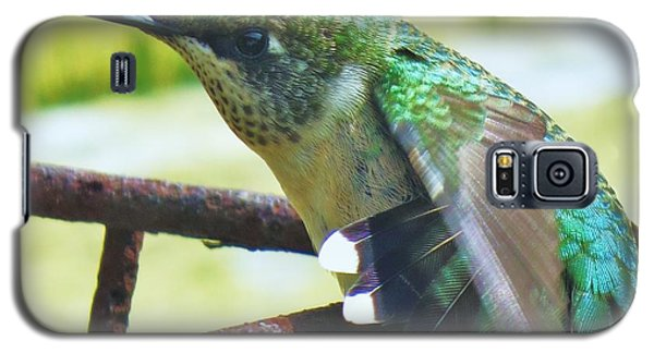 Galaxy S5 Case featuring the photograph Hummingbird Details 6 by Judy Via-Wolff