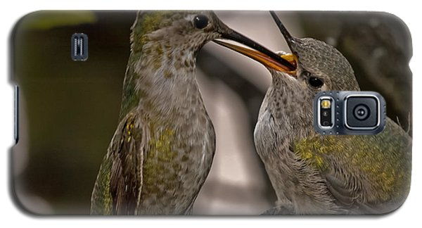 Hummingbird Feeding Baby Galaxy S5 Case
