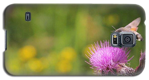 Galaxy S5 Case featuring the photograph Hummingbird Hawk-moth - Macroglossum Stellatarum by Jivko Nakev