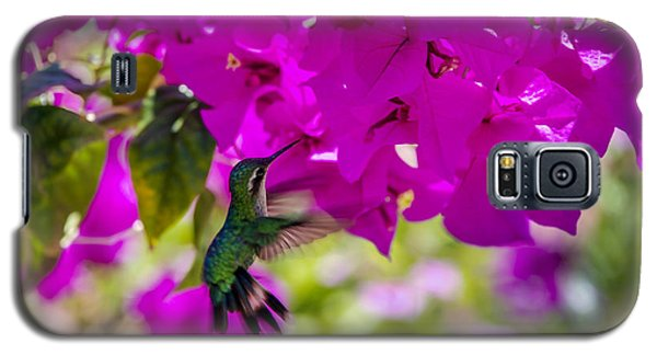 Galaxy S5 Case featuring the photograph Hummingbird In A Garden Paradise by Phil Abrams