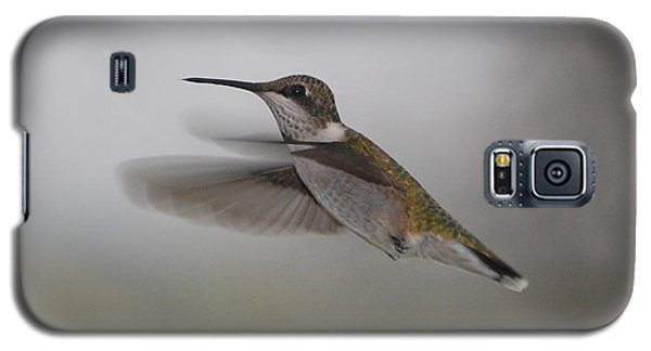 Galaxy S5 Case featuring the photograph Hummingbird  by Leticia Latocki