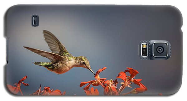 Hummingbird Or My Summer Visitor Galaxy S5 Case by Jola Martysz