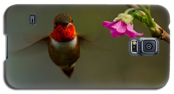Hummingbird Galaxy S5 Case by Tikvah's Hope