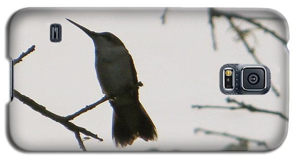 Galaxy S5 Case featuring the photograph Hummingbird Silhouette 2 by Joy Hardee