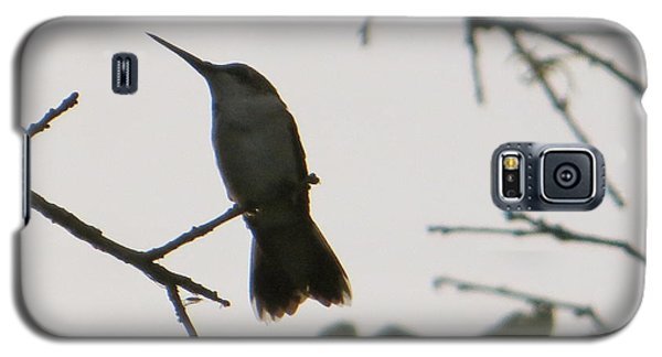Hummingbird Silhouette 2 Galaxy S5 Case by Joy Hardee