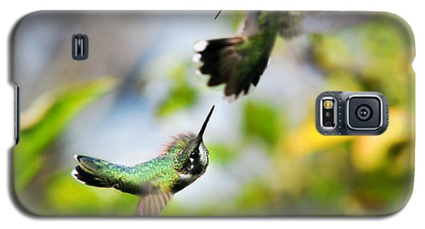 Hummingbirds Ensuing Battle Galaxy S5 Case by Christina Rollo