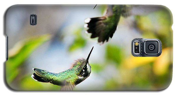 Hummingbirds Ensuing Battle Galaxy S5 Case