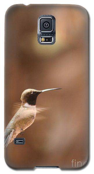 Galaxy S5 Case featuring the photograph Hummmmm by Nola Lee Kelsey