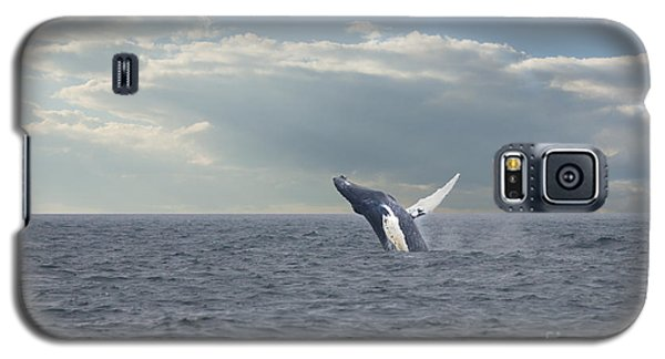 Humpback Whale Breaching Galaxy S5 Case