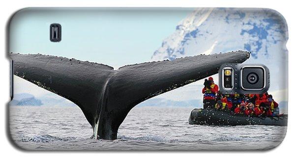 Humpback Whale Fluke  Galaxy S5 Case
