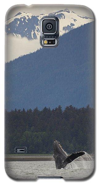 Humpback Whale In Alaska 73a6815  Galaxy S5 Case