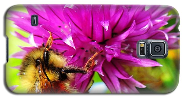 Hungry Bee Galaxy S5 Case by Karen Horn