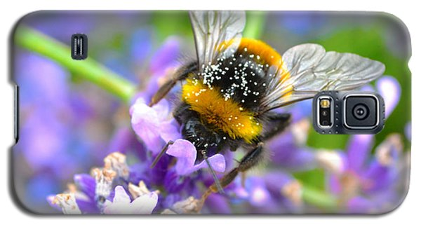 Hungry Bee Galaxy S5 Case