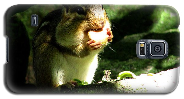 Hungry Hungry Chipmunk Galaxy S5 Case
