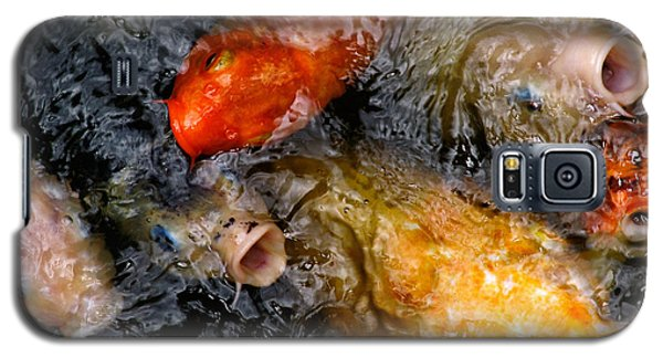 Galaxy S5 Case featuring the photograph Hungry Koi Fish by John Swartz