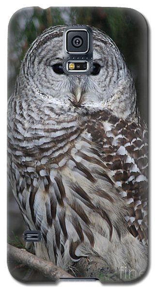 Galaxy S5 Case featuring the photograph Hunter by Sharon Elliott
