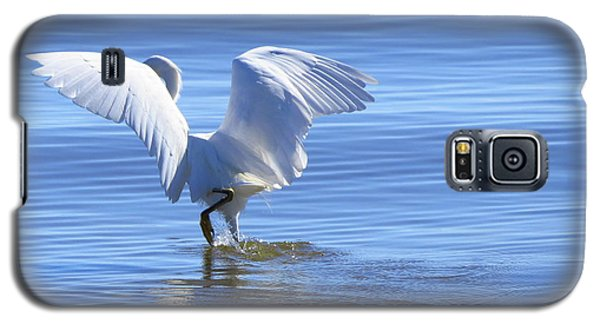 Galaxy S5 Case featuring the photograph Hunting Dance by Phyllis Beiser