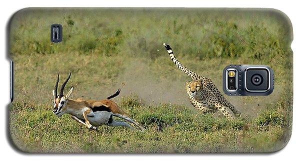 Cheetah Galaxy S5 Case - Hunting by Giuseppe D\\\'amico