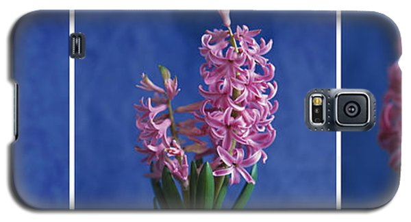 Galaxy S5 Case featuring the photograph Hyacinth by Lana Enderle