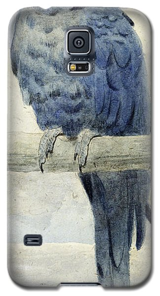 Macaw Galaxy S5 Case - Hyacinthine Macaw by Henry Stacey Marks