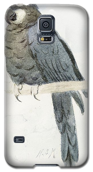 Macaw Galaxy S5 Case - Hyancinth Macaw by Henry Stacey Marks