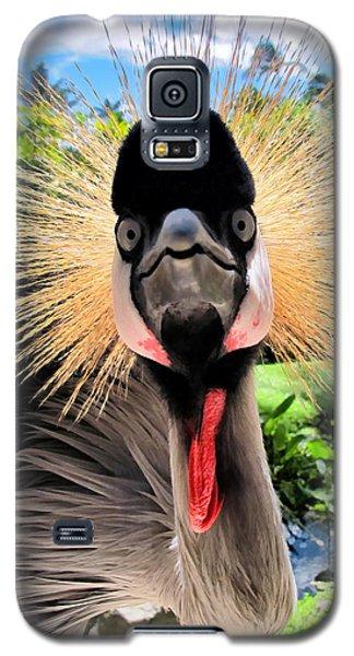 Galaxy S5 Case featuring the photograph Hyatt 18 by Dawn Eshelman