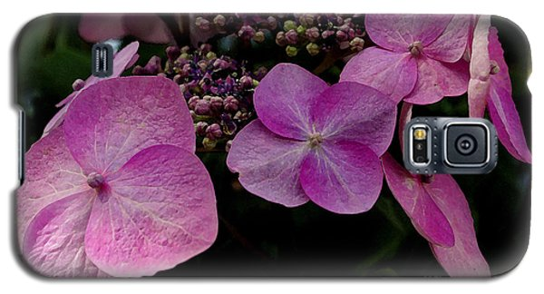 Hydrangea Flowers  Galaxy S5 Case