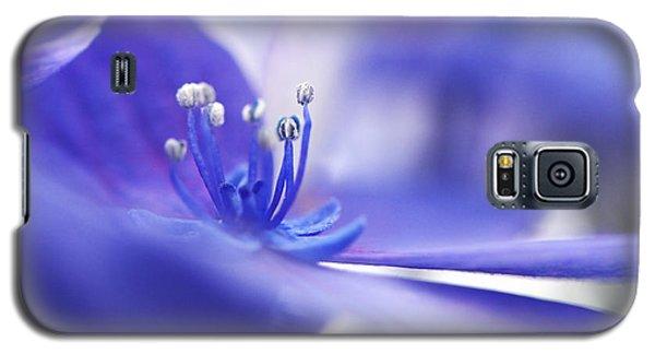 Hydrangea Closeup Galaxy S5 Case by Sharon Talson