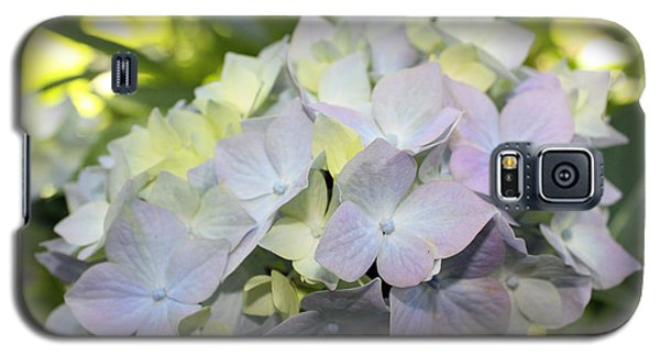 Galaxy S5 Case featuring the photograph Hydrangea by Gerry Bates