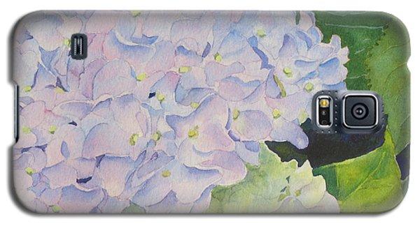 Hydrangea Galaxy S5 Case by Judy Mercer