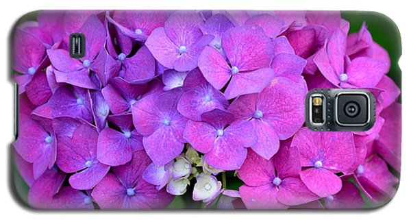 Galaxy S5 Case featuring the photograph Hydrangea  by Kathy King