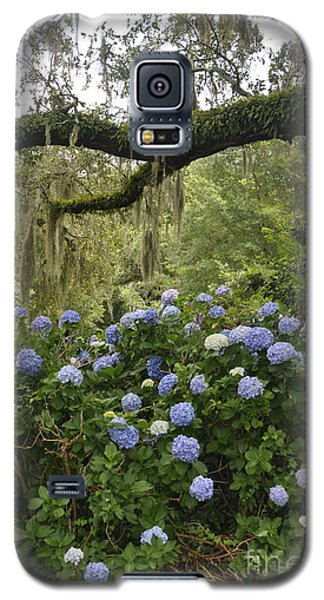 Hydrangeas In The Village  Galaxy S5 Case