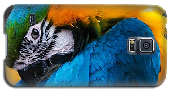 I Always Feel Like Somebody's Watching Me Galaxy S5 Case by Robert L Jackson