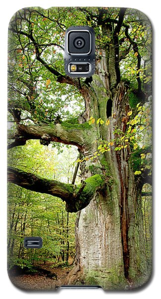 I Am Nearly 1000 Years Old Galaxy S5 Case by Heiko Koehrer-Wagner