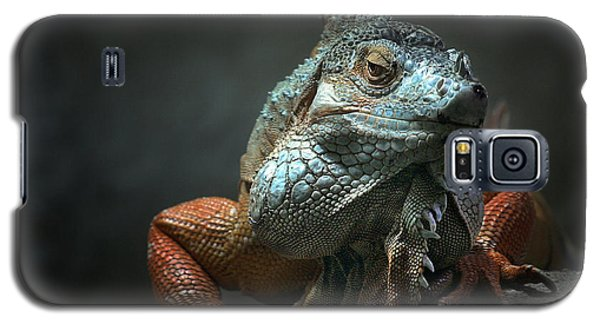 Dragon Galaxy S5 Case - I Am The King ,.. Who Else ! by Holger Droste