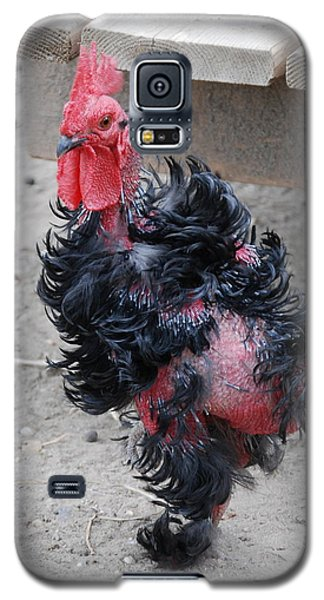 Galaxy S5 Case featuring the photograph I Dont Recall by Kathy Gibbons