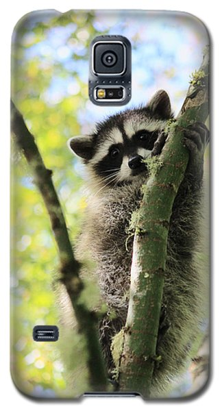 I Don't Want To Come Down Galaxy S5 Case by Kym Backland