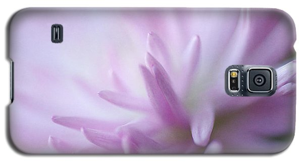 I Dream Of Dahlia Galaxy S5 Case by Fraida Gutovich